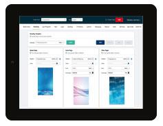 IBM-APIC-Consulting